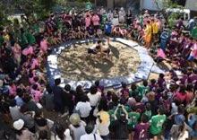 競技の中で一番人気なのはやっぱり相撲!